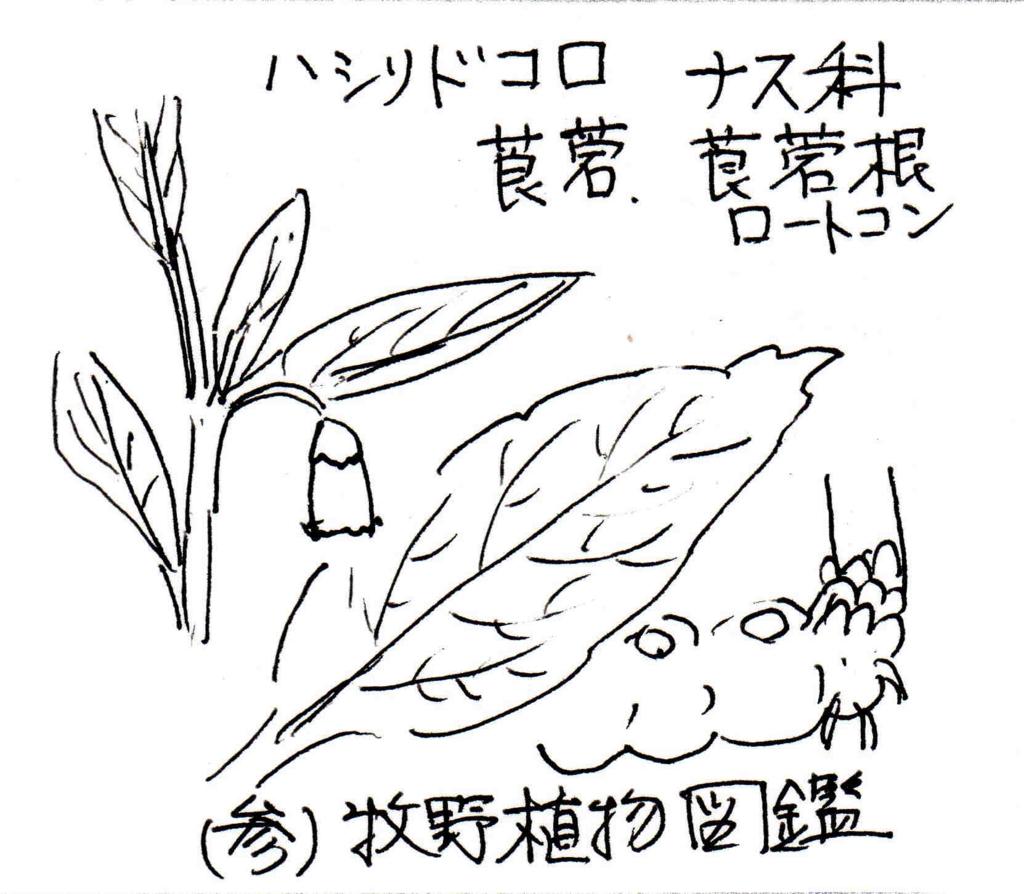 f:id:chuumeikun:20171031190442j:plain