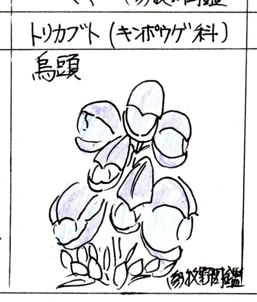 f:id:chuumeikun:20171031190550j:plain