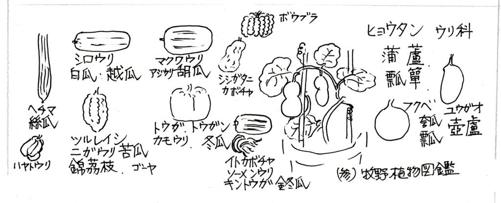 f:id:chuumeikun:20171031190958j:plain