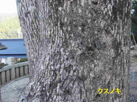f:id:chuumeikun:20171116002107j:plain