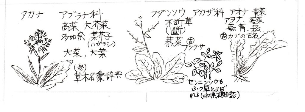 f:id:chuumeikun:20171120001919j:plain