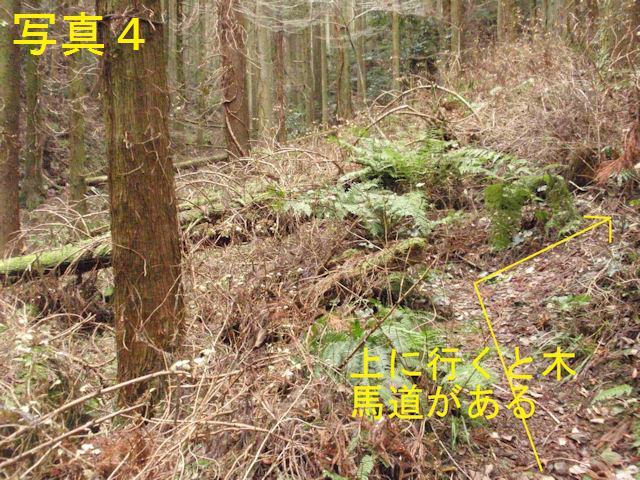 f:id:chuumeikun:20171226225707j:plain