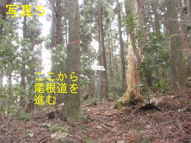 f:id:chuumeikun:20171226225816j:plain