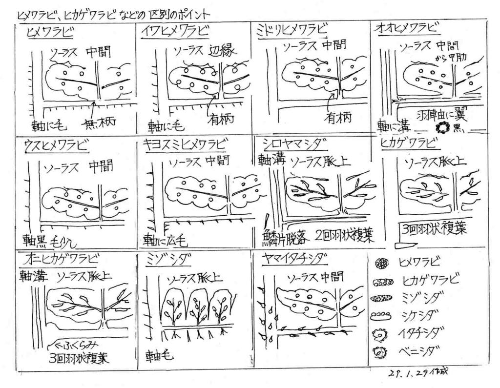 f:id:chuumeikun:20171229140522j:plain