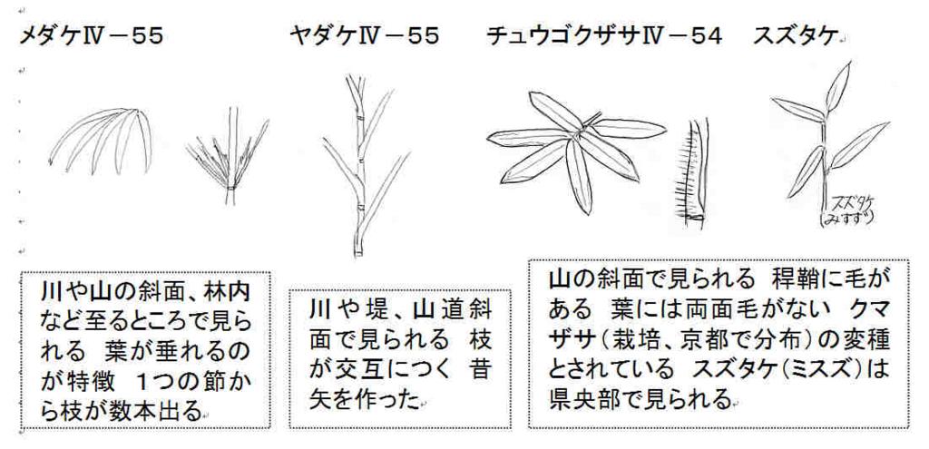 f:id:chuumeikun:20180104072512j:plain