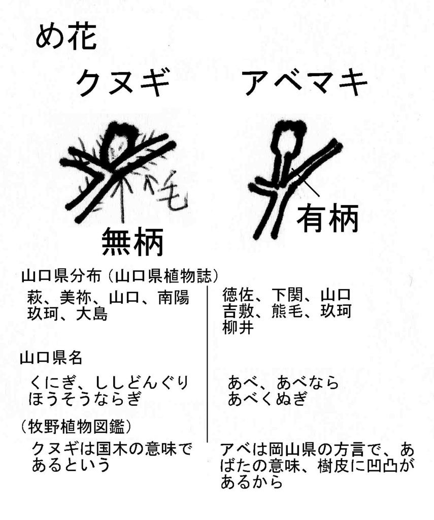 f:id:chuumeikun:20180117151130j:plain