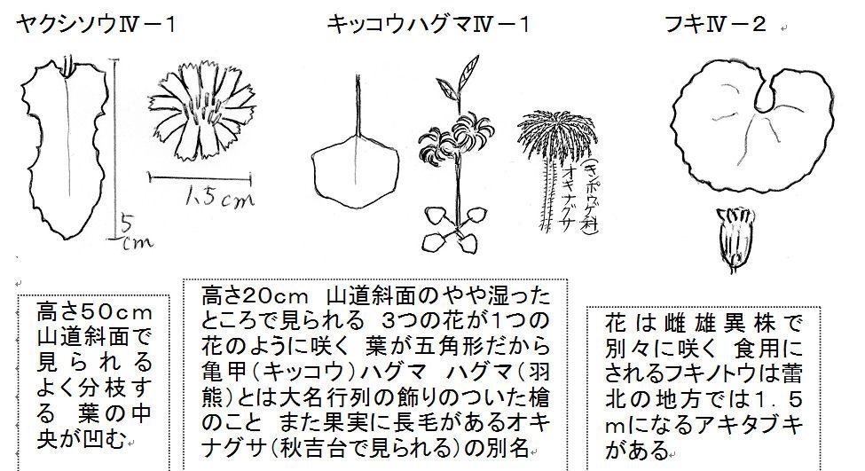 f:id:chuumeikun:20180119185843j:plain