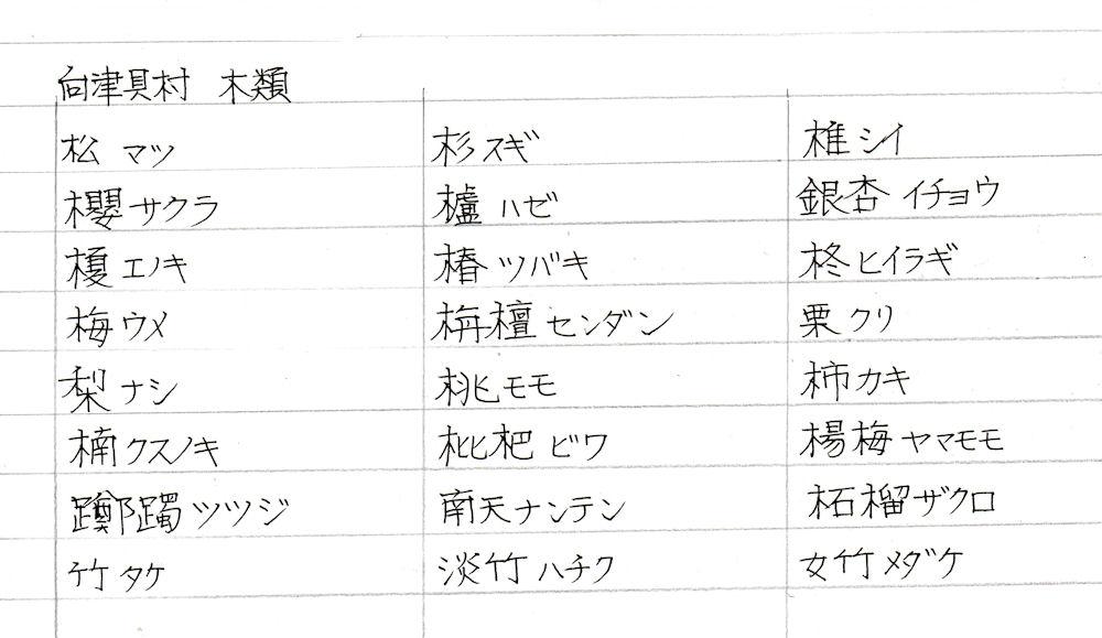 f:id:chuumeikun:20180307190138j:plain