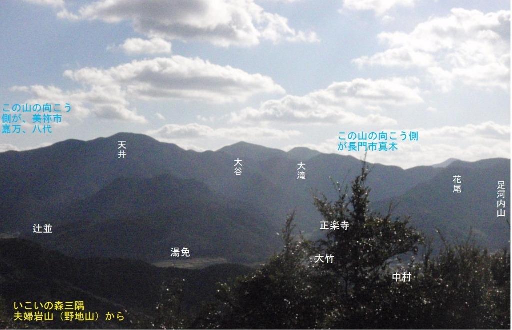 f:id:chuumeikun:20180308153155j:plain