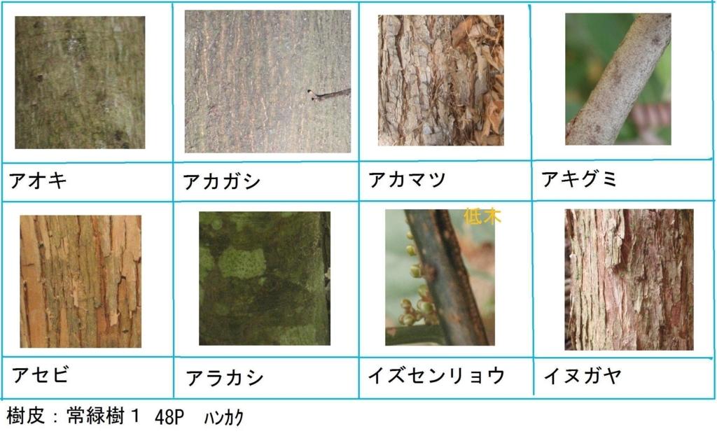 f:id:chuumeikun:20180322021741j:plain