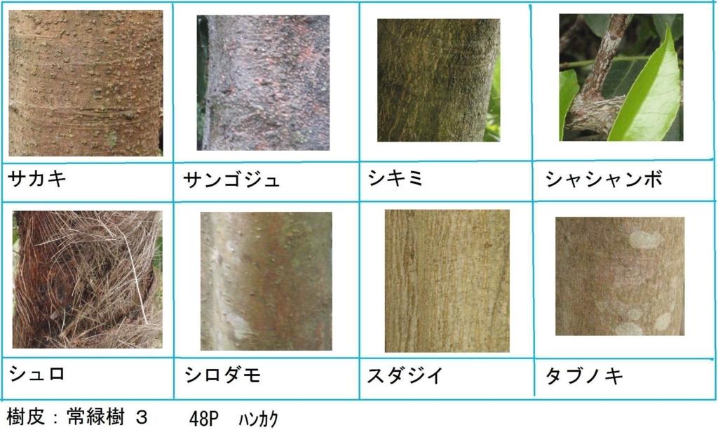 f:id:chuumeikun:20180322021819j:plain