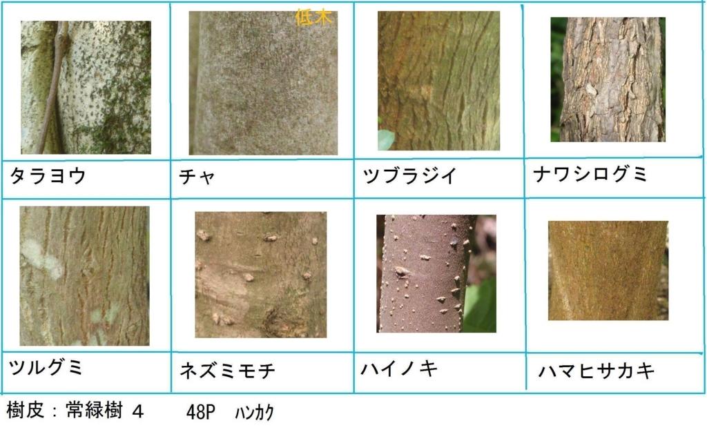 f:id:chuumeikun:20180322021839j:plain