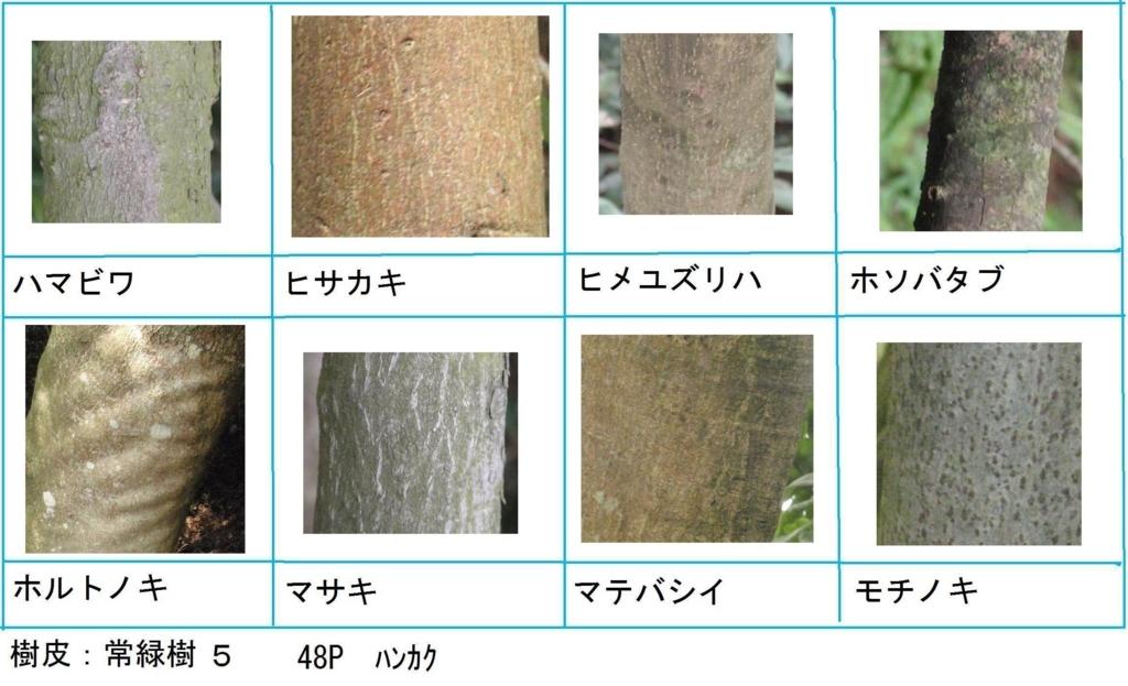 f:id:chuumeikun:20180322021858j:plain