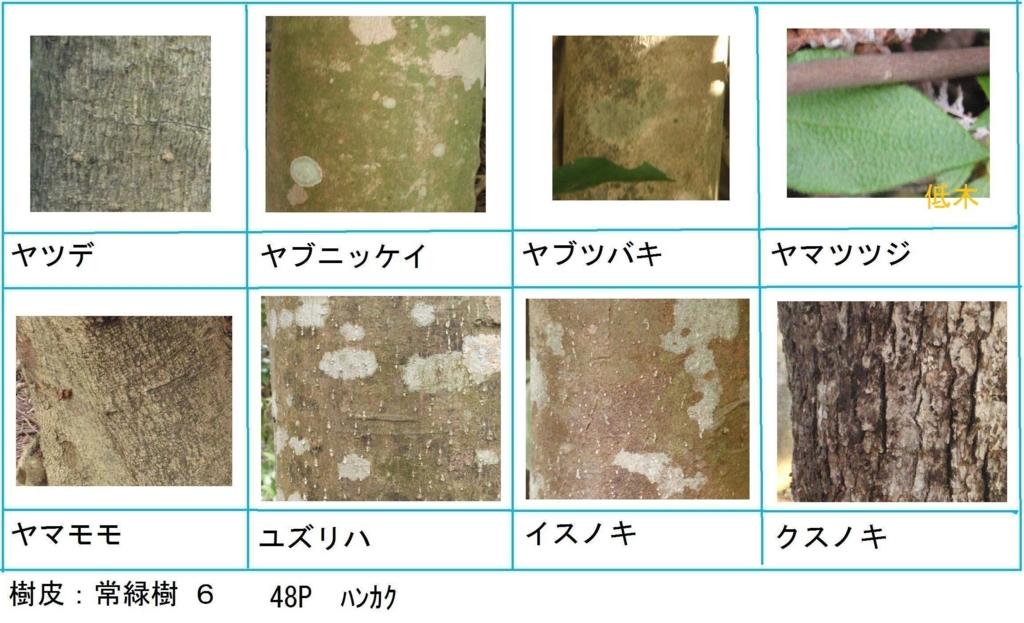 f:id:chuumeikun:20180322021917j:plain