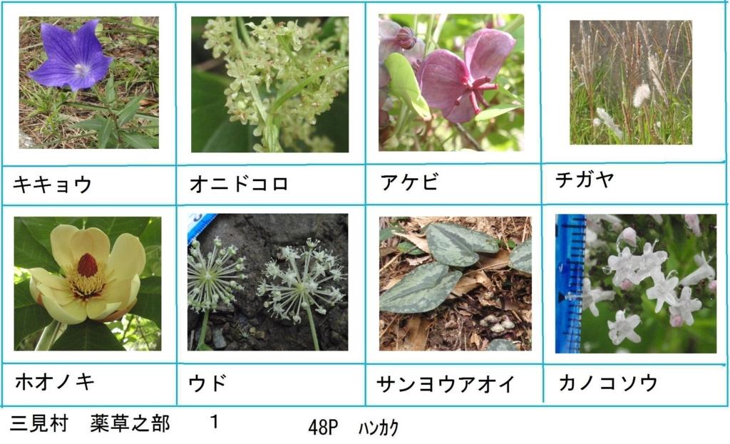 f:id:chuumeikun:20180330193430j:plain