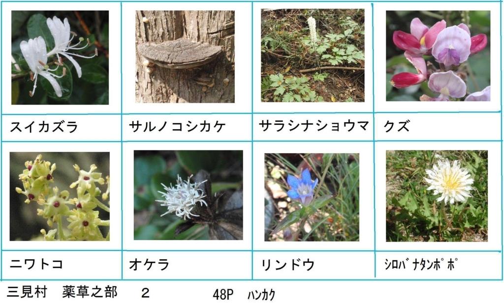 f:id:chuumeikun:20180330193454j:plain