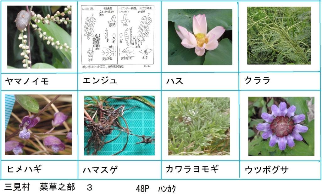 f:id:chuumeikun:20180330193517j:plain