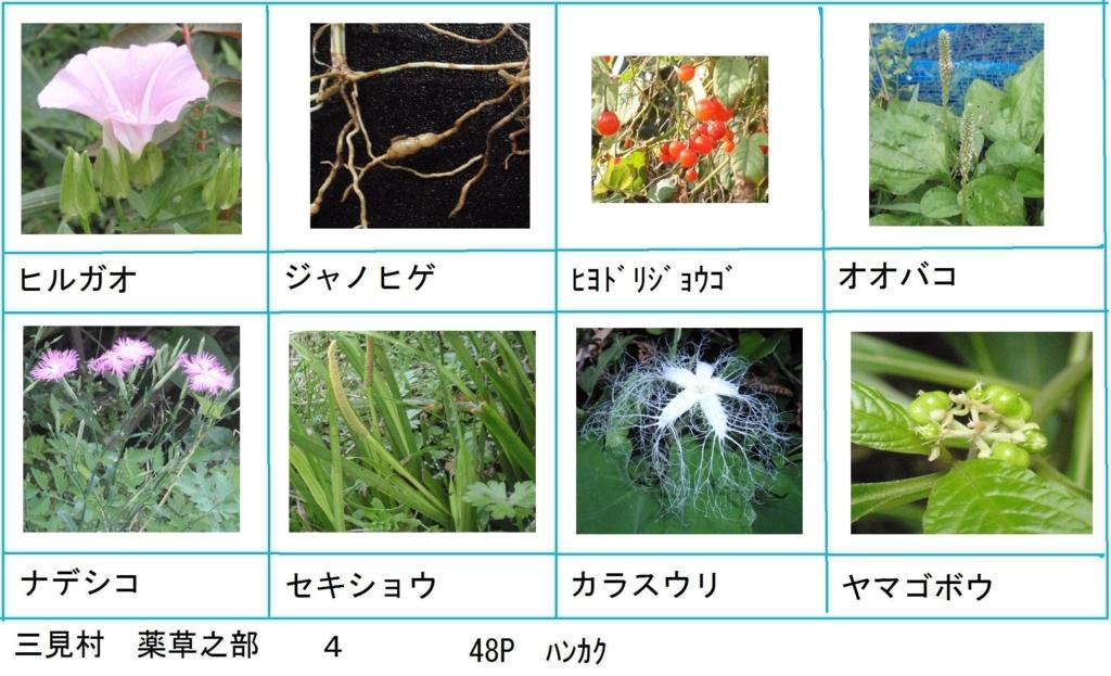 f:id:chuumeikun:20180330193546j:plain