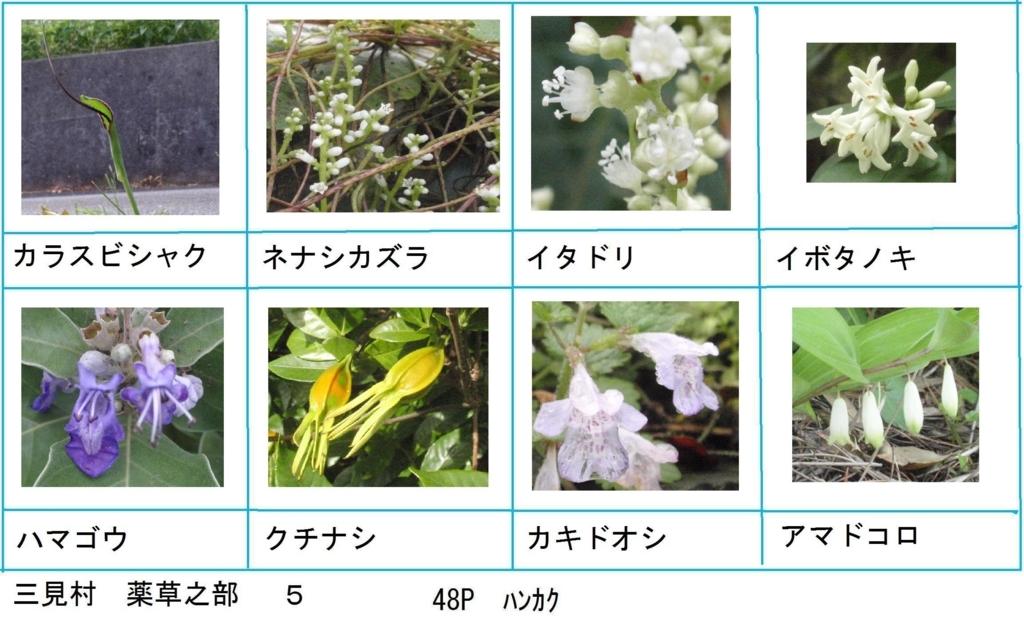 f:id:chuumeikun:20180330193610j:plain