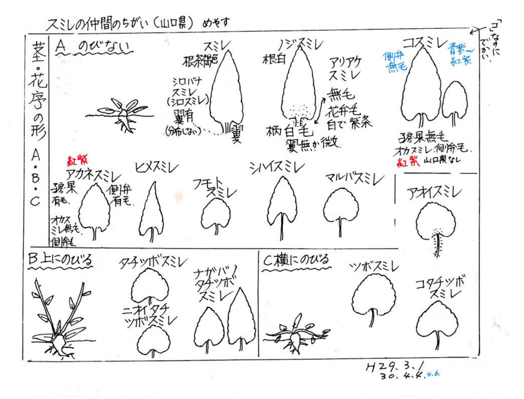 f:id:chuumeikun:20180407191652j:plain