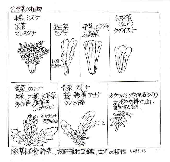 f:id:chuumeikun:20180414164917j:plain
