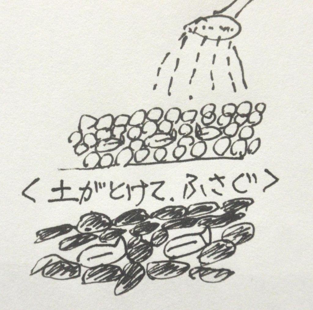 f:id:chuumeikun:20180417150122j:plain