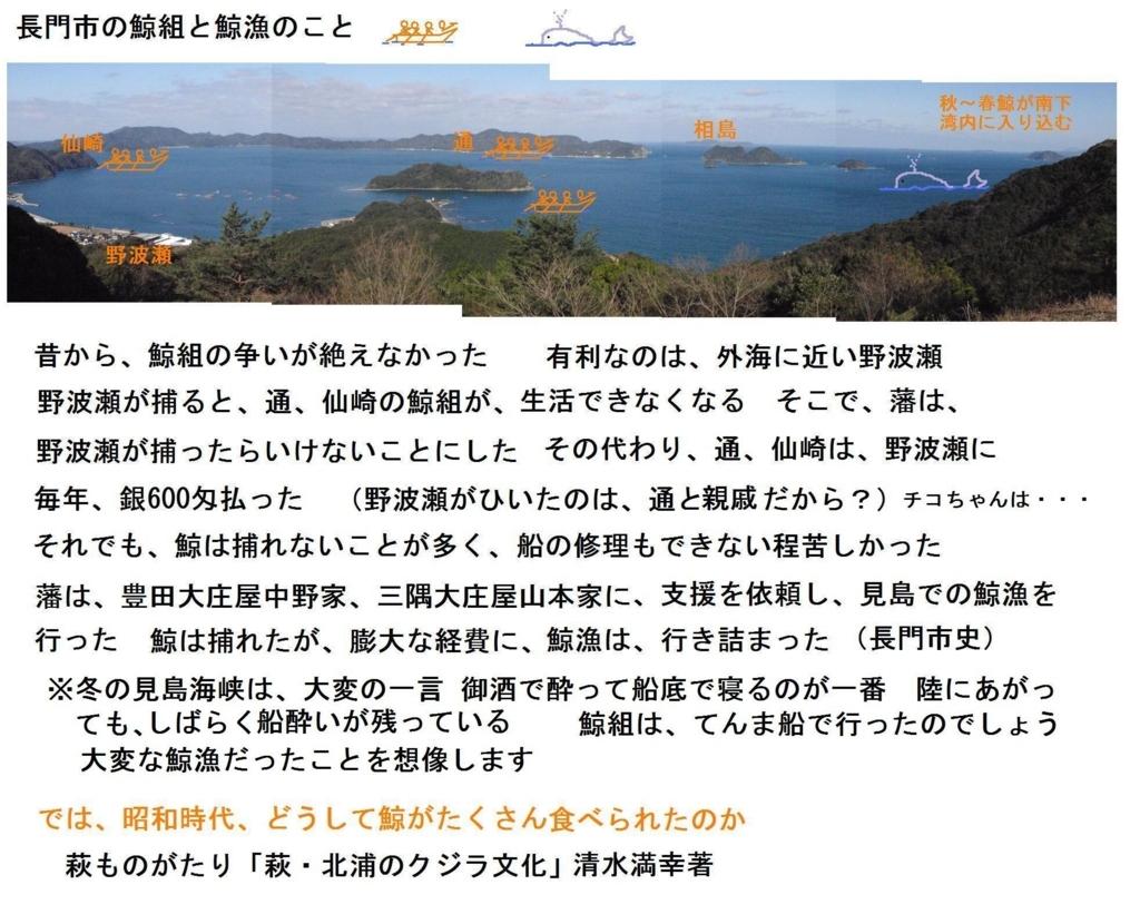 f:id:chuumeikun:20180707210657j:plain