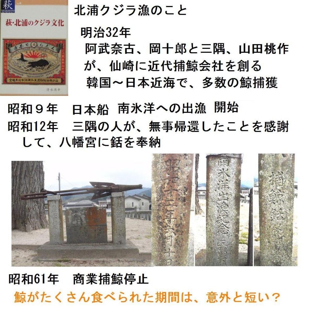 f:id:chuumeikun:20180707210742j:plain
