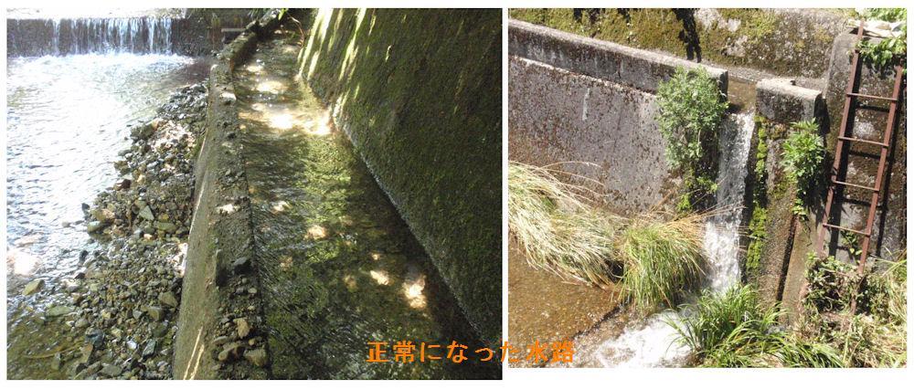 f:id:chuumeikun:20180715193839j:plain