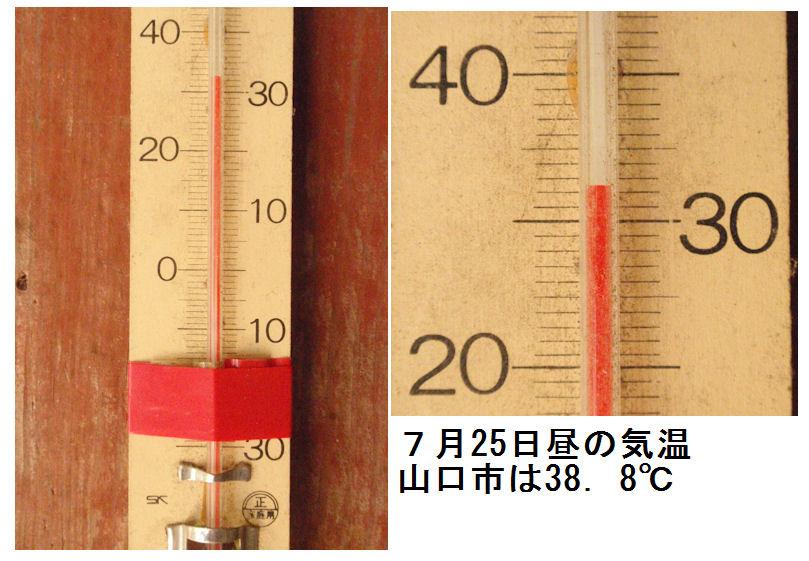 f:id:chuumeikun:20180725215249j:plain