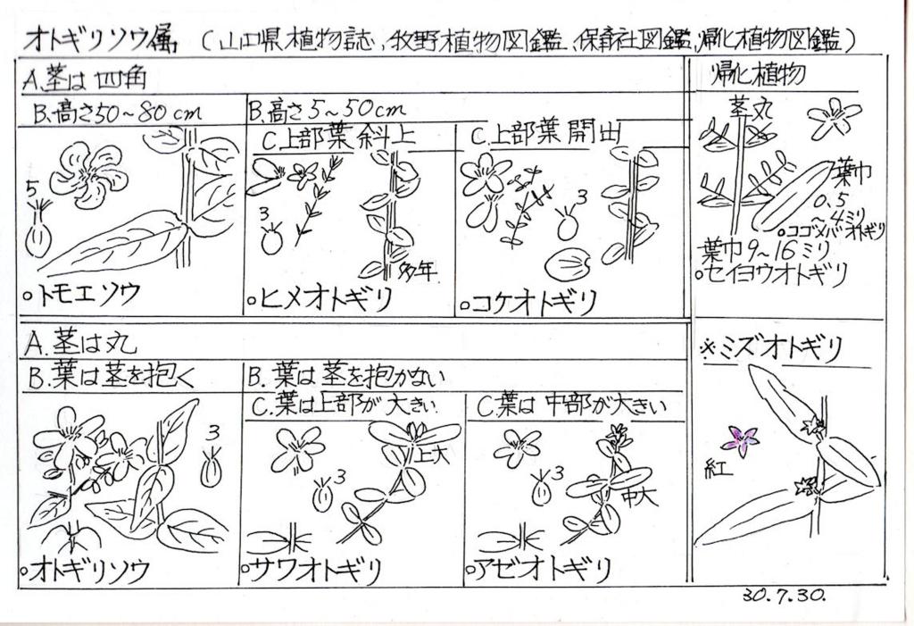 f:id:chuumeikun:20180801002159j:plain