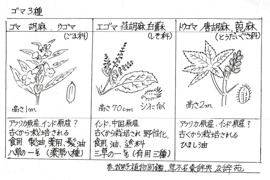 f:id:chuumeikun:20180823193057j:plain