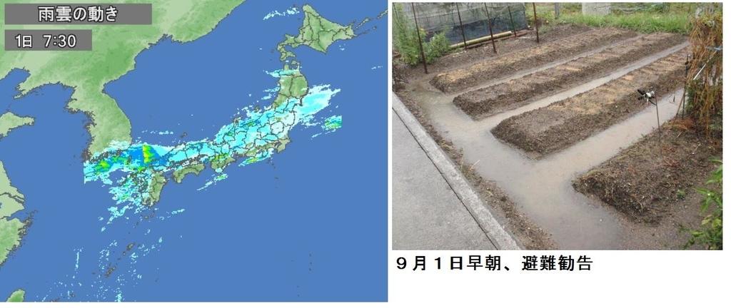 f:id:chuumeikun:20180902203853j:plain