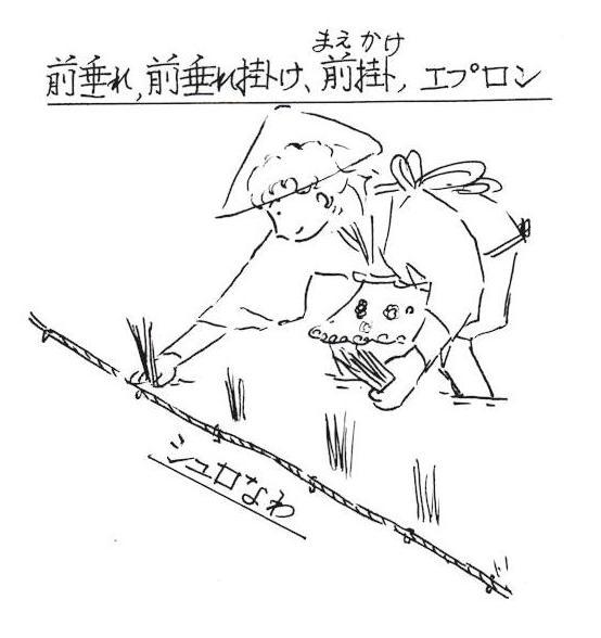 f:id:chuumeikun:20181002211623j:plain