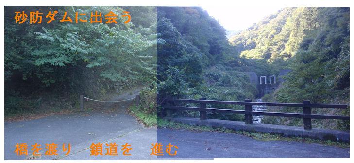 f:id:chuumeikun:20181021195259j:plain