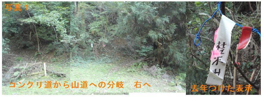 f:id:chuumeikun:20181021195316j:plain