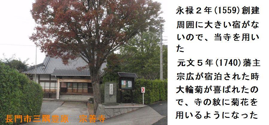 f:id:chuumeikun:20181027093154j:plain