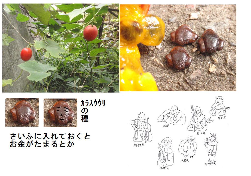 f:id:chuumeikun:20181031150541j:plain