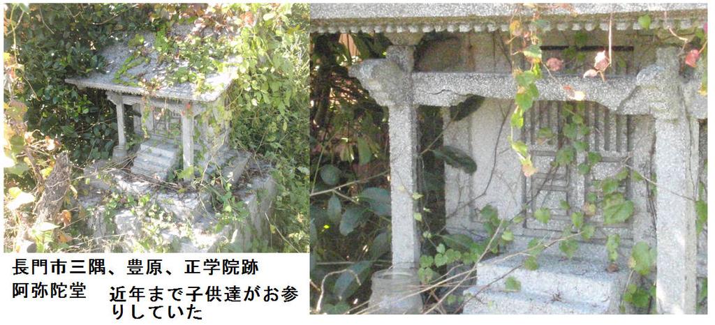 f:id:chuumeikun:20181104171355j:plain