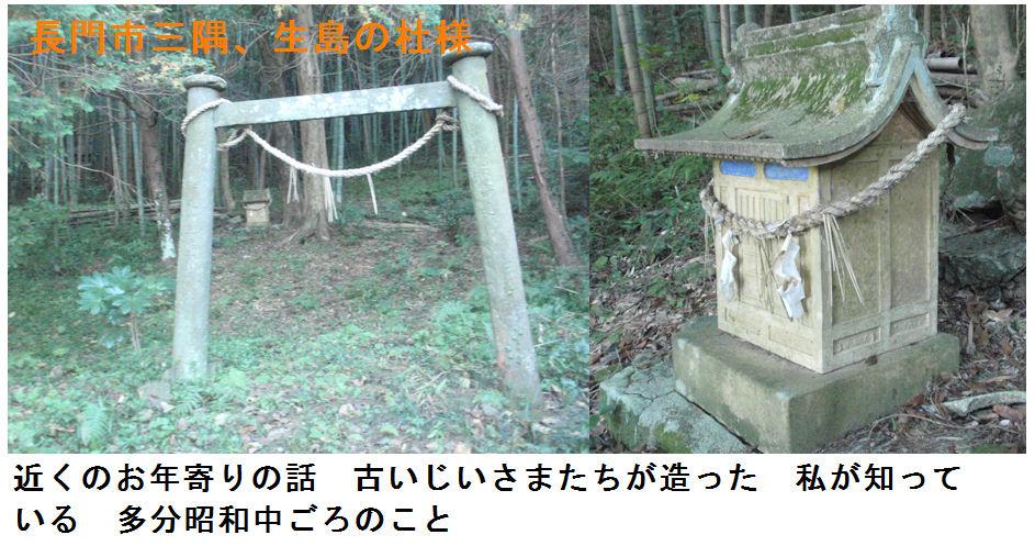 f:id:chuumeikun:20181104171428j:plain