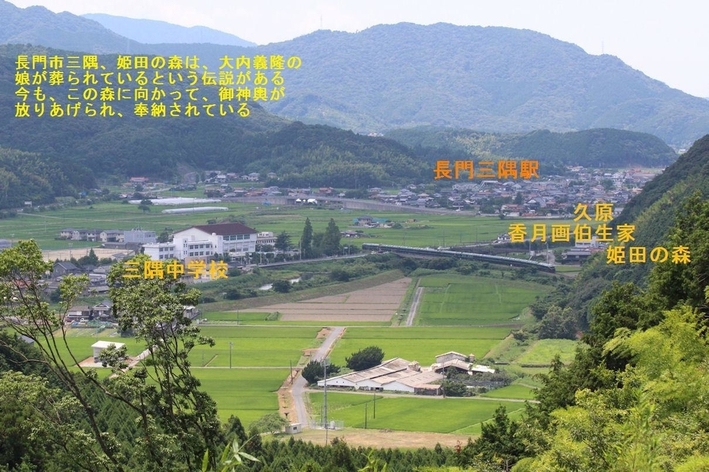 f:id:chuumeikun:20181201043914j:plain