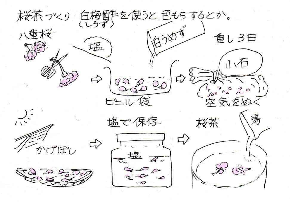 f:id:chuumeikun:20190117190133j:plain