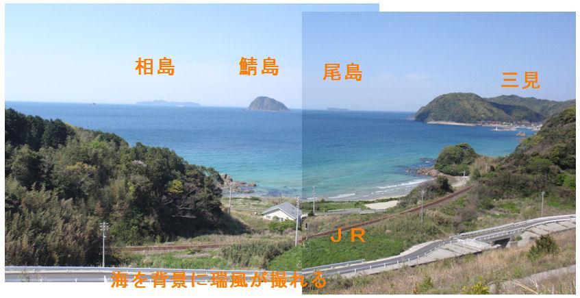 f:id:chuumeikun:20190420022451j:plain