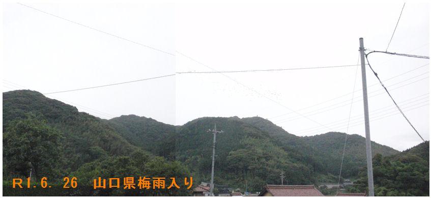 f:id:chuumeikun:20190627033326j:plain