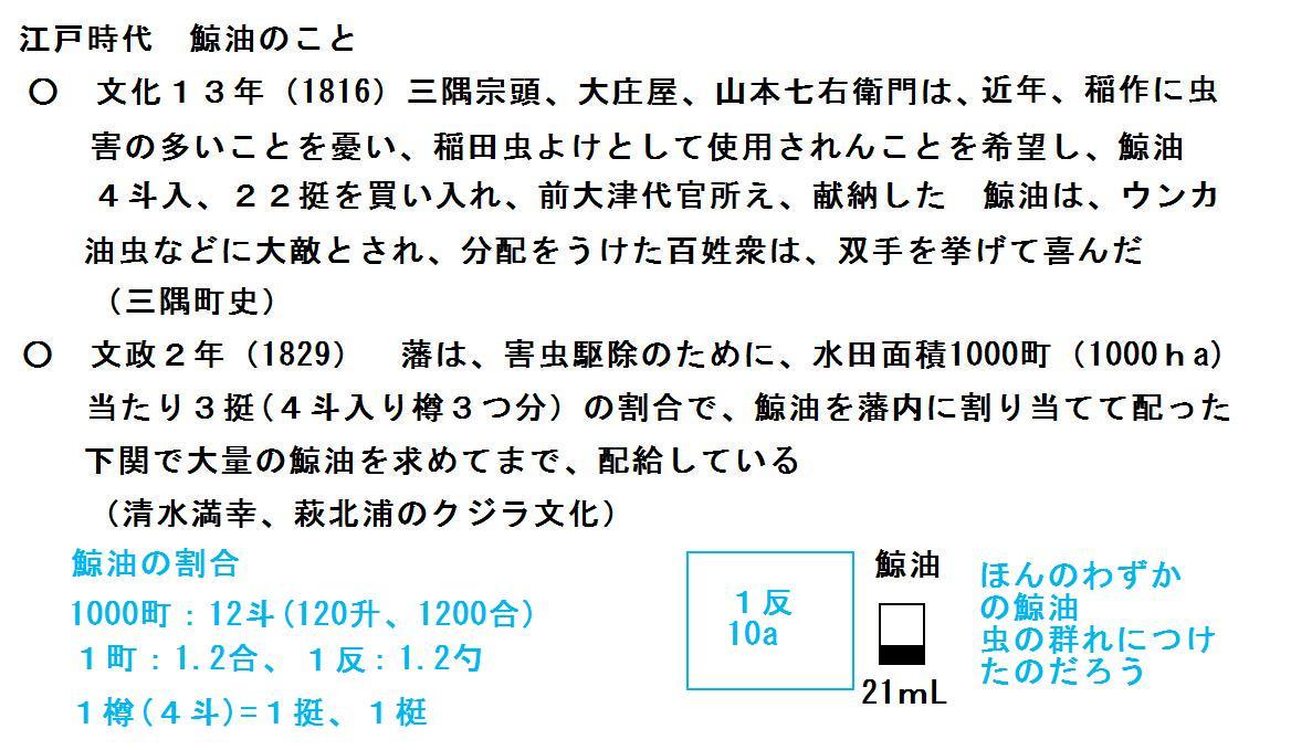 f:id:chuumeikun:20190715075415j:plain