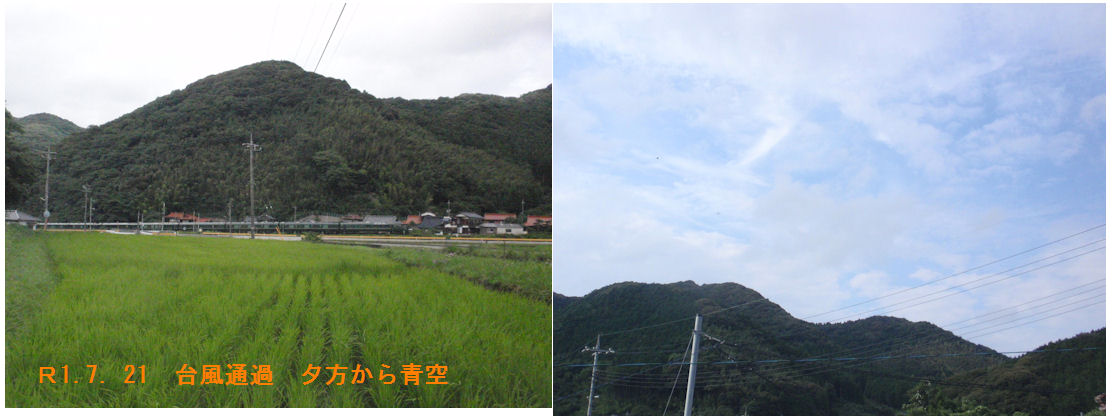 f:id:chuumeikun:20190721182527j:plain