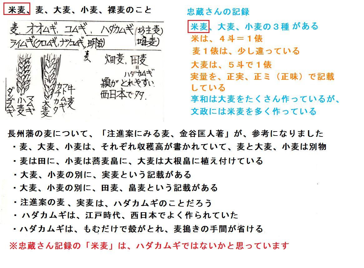 f:id:chuumeikun:20190727082406j:plain