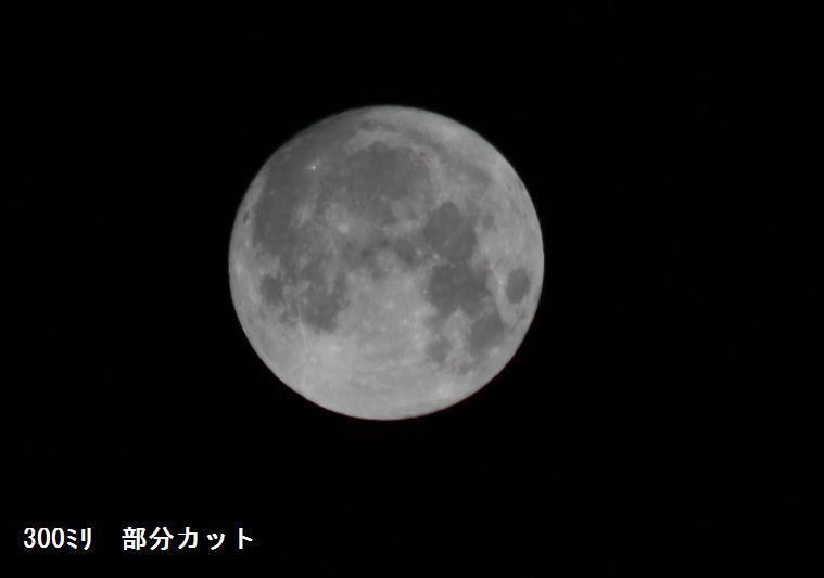 f:id:chuumeikun:20190914012310j:plain