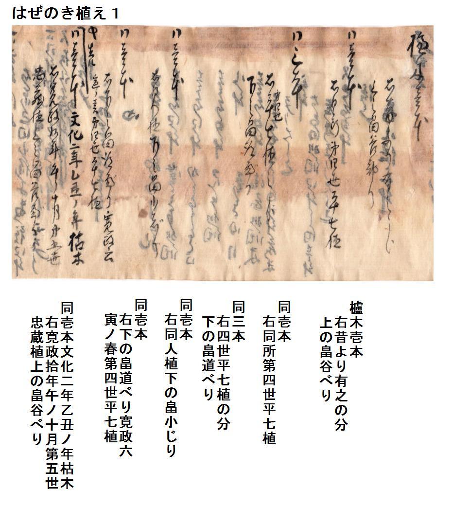 f:id:chuumeikun:20191006084030j:plain
