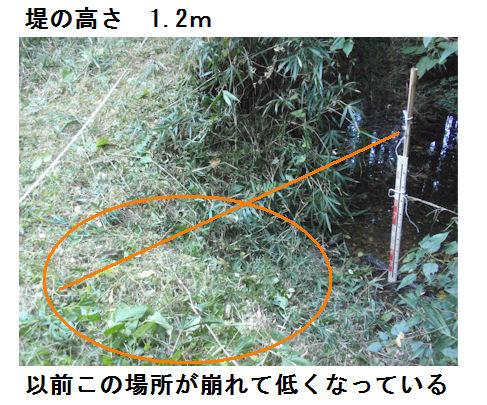 f:id:chuumeikun:20191121185829j:plain